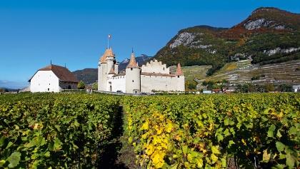 Schloss Aigle.