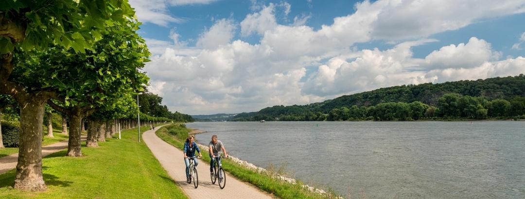 Rheinradweg bei Bad Breisig