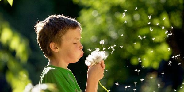 Kind mit Pusteblume