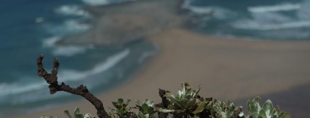Ausblick vom Pico de la Zarza auf die Halbinsel El Islote