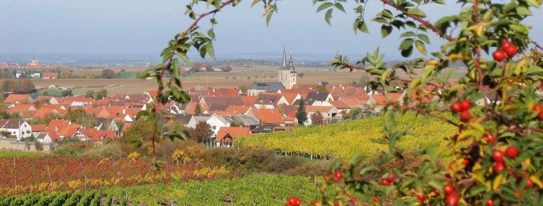 Blick auf Hüttenheim
