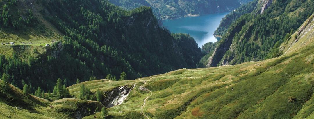 Abstieg von der Motterasciohütte zum Luzzone-Stausee.