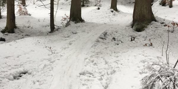 Skitour Hochschwarzeck - Toter Mann
