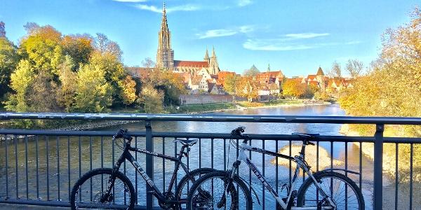 Blick auf Ulm und Donau