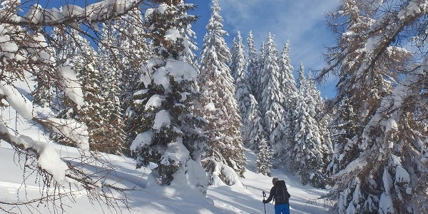 Skitour Sterzing-Ratschings