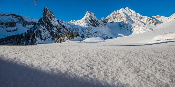 Eine wunderbare Winterlandschaft erwartet die Schneeschuhläufer auf Gitschenen