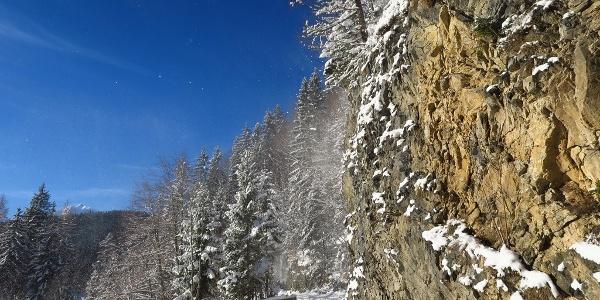 Zu Beginn entlang der tiefverschneiten Forststraße Richtung Egglalm
