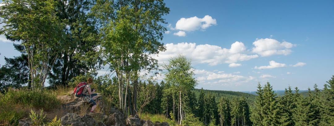 "Rothaarsteig-Spur - ""Trödelsteinpfad"""