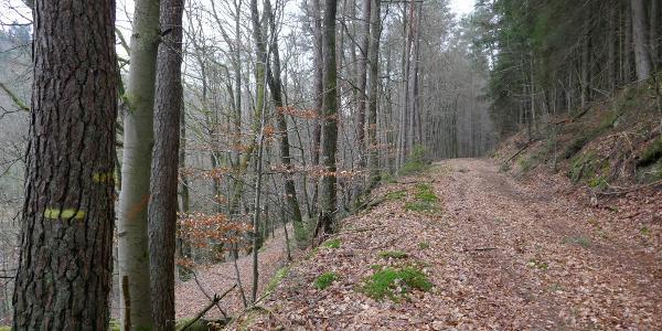 Der gelbe Balken des Pfälzerwaldvereins