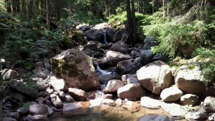 Upper course of river Novella