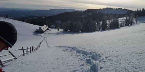 Schneeschuh-Runde am Brandkogel_Blick zurück