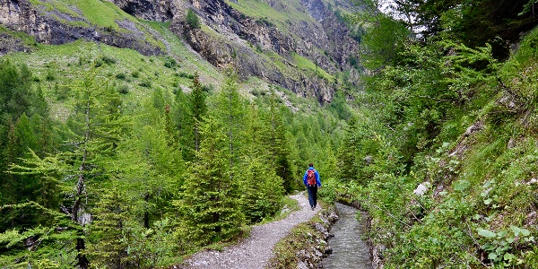 Der Weg führt entlang einer Walliser Suone.