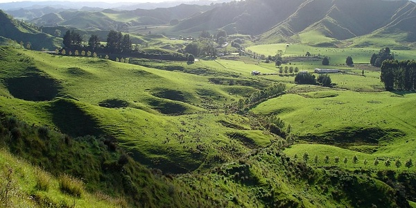 The hinterland of New Zealand