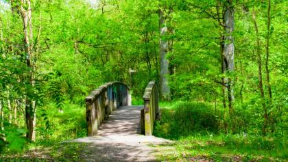 Brücke ueber den Fuhsekanal