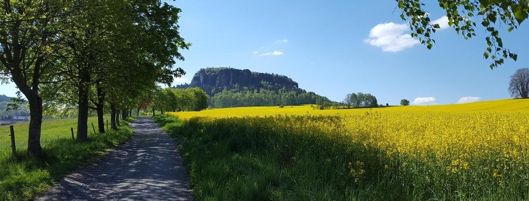 Schon der Weg zum Pfaffenstein ist wunderschön, besonders im Frühjahr