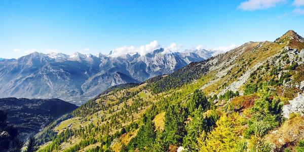 Ausblick aufs Tal im Herbst