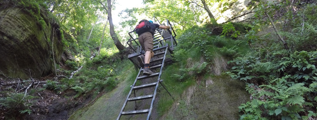 One of the many ladders up to the Schrammstein viewpoint