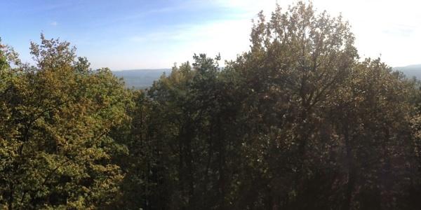 Aussicht von der Starhembergwarte des ÖTK in die Wachau