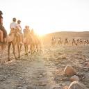 Kamelreiten in der Negev-Wüste