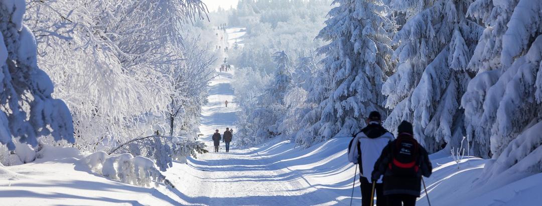 Langläufer und Winterwanderer im Kahleberggebiet