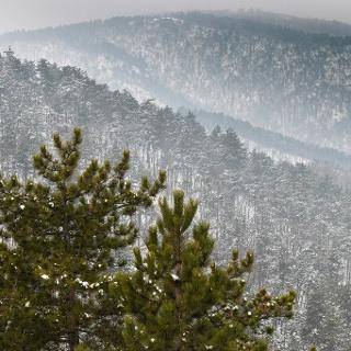 Panoráma nyugatra a Sziklás-hegy csúcsa alól