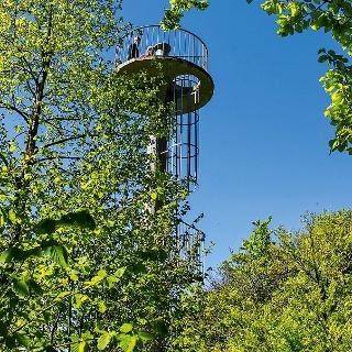 Aussichtsturm auf dem Remelberg.