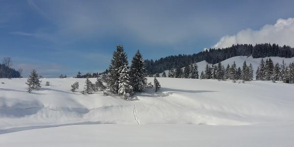 Winterlandschaft am Hochhäderich