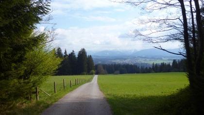 Direkt auf die Alpenkette zu geht es von der Schnalz hinunter nach Holzleithen.