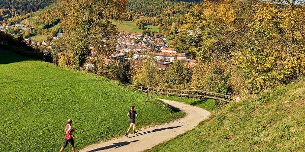 Kulmbach von oben