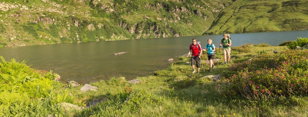 The best Long Distance Hiking Trails in Switzerland