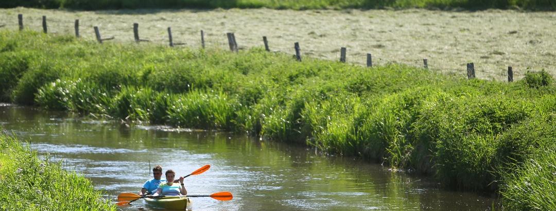 Paddeln auf der Recknitz bei Tessin