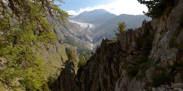 Versteckter Blick auf den Aletschgletscher