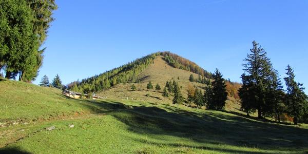 Oberauer Brunstalm und Hochplattenanstieg