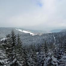 Blick auf den Skihang und das Nationalparkzentrum