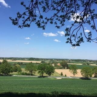 Ausblick auf die Theenhausener Landschaft