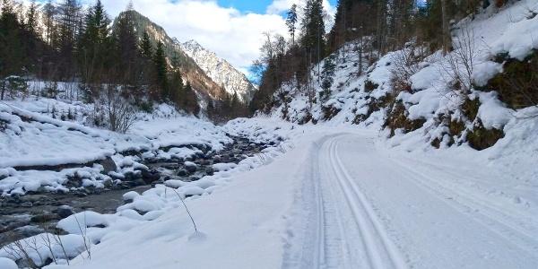 Mit den Langlaufskieren entlang der Alfenz