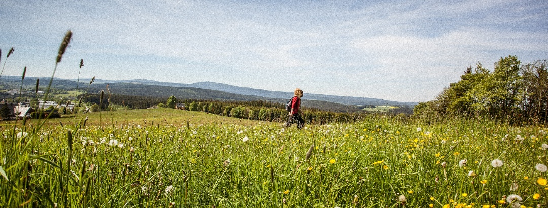Kammweg Erzgebirge - Vogtland