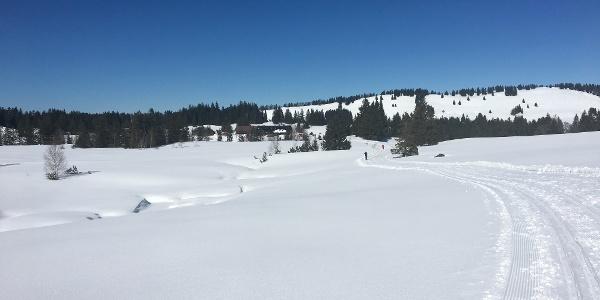 Blick auf den Alpengasthof Hörmoos