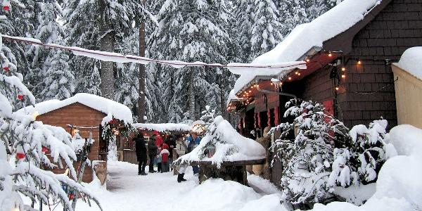 Das Waldcafé im Winter