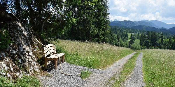 """Station """"Ausblick"""" beim Tobelweg"""