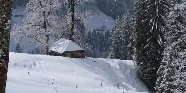 Verschneite Alpgebäude bei Undere Chemmeri.