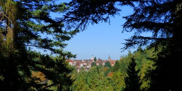 Ausblick von der Schöneck-Hütte auf Freudenstadt