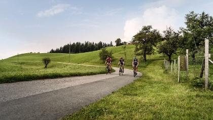 Idyllic scenery while roadbiking