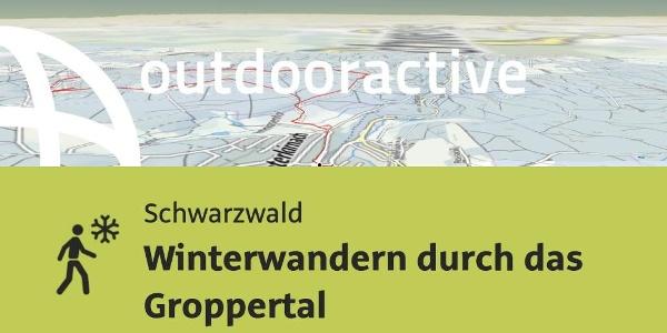 Winterwanderung im Schwarzwald: Winterwandern durch das Groppertal