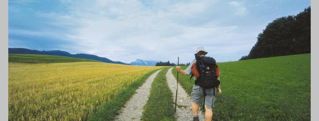 Am Jakobsweg von Eugendorf nach Salzburg