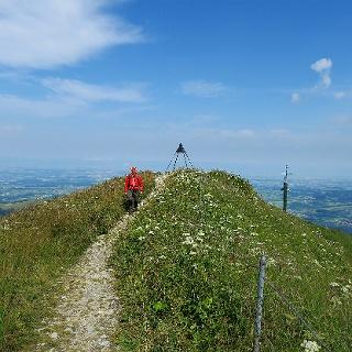 Moléson-Gipfel.