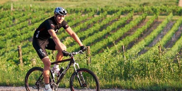 Vorbei an Weingärten