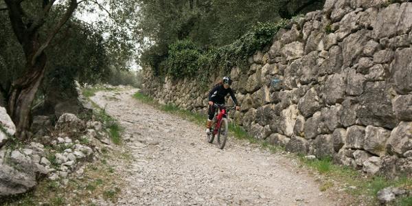Near the gorge of Rio Sallagoni