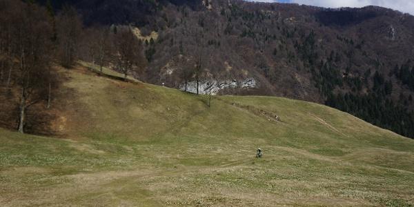 The meadows next to Malga Grassi