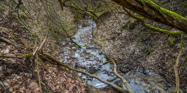 A lefelé rohanó, kőgörgetegeket terelő Zátori-patak